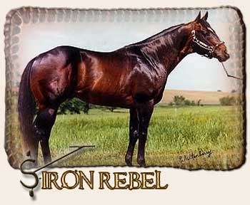Iron Rebel